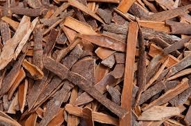 cinnamon-bark