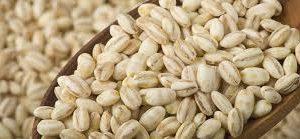 pearl-barley-bulk